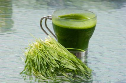juicing-wheatgrass